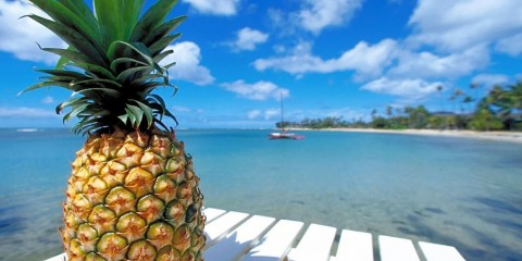 fresh-beach-pineapple-wallpaper